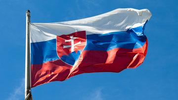 Флаг Словакии. Архивное фото