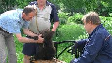 Медвежонок-найденыш готовится к цирку в зоопарке под Томском