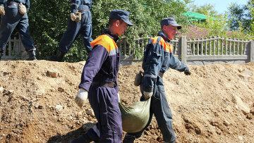 Сотрудники МЧС работают на месте паводка в Приамурье, архивное фото