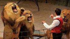 Прогон новой программы в цирке Славы Полунина