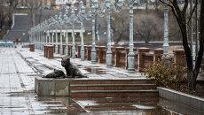 Ноябрьский ливень во Владивостоке