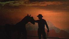 Историю человечества в тенях показали артисты шоу The Fantastic Shadows
