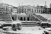 Петродворец в дни войны