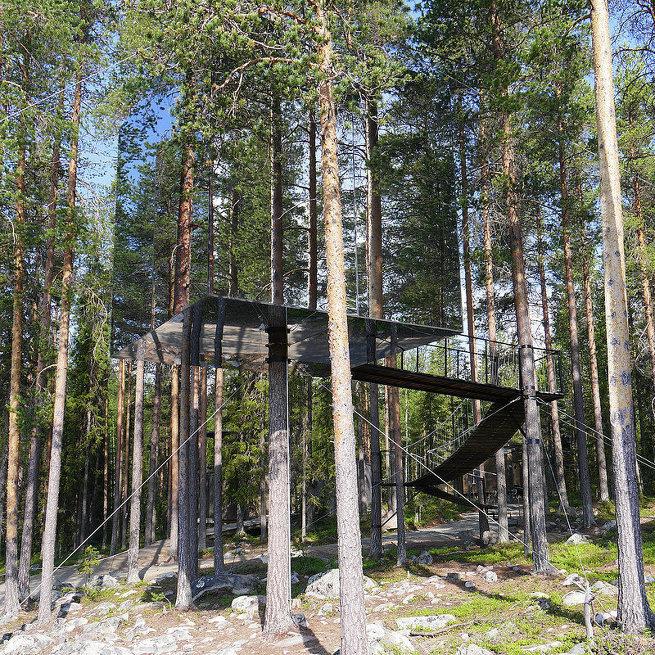 Treehotel в Швеции