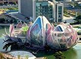Каменные цветы: 7 необычных зданий в форме цветов по всему миру