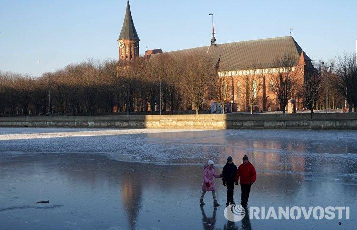 Зимние виды Калининграда
