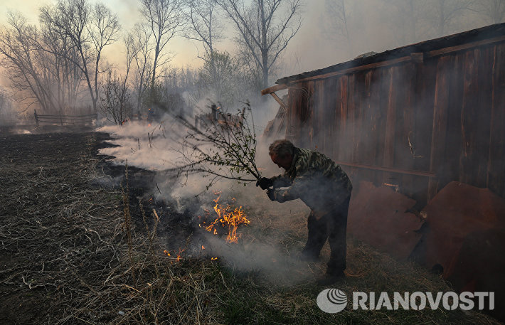 Лесные пожары в Амурской области
